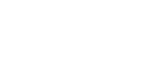 Nyborg Midtermole
